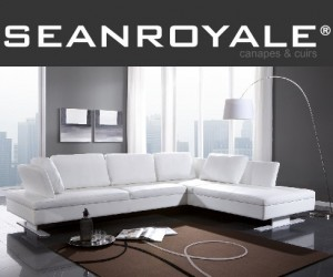canape angle boxieblanc seanroyale blog de seanroyale. Black Bedroom Furniture Sets. Home Design Ideas