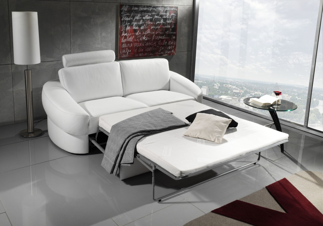 un canape en cuir convertible et pratique blog de seanroyale. Black Bedroom Furniture Sets. Home Design Ideas